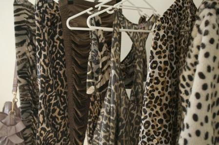 animal-animal-print-animalistic-brown-clothes-fashion-favim-com-65082